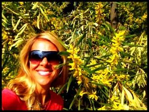 Meredith Holcomb - Mimosa